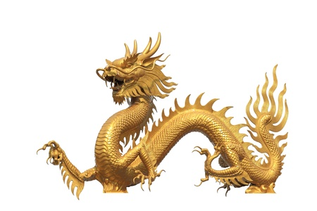 chinese dragon: Golden dragon statue on white bachground