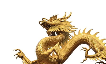 dragon: Golden dragon statue on white bachground