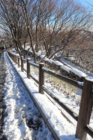 handrail with snow in winter  photo