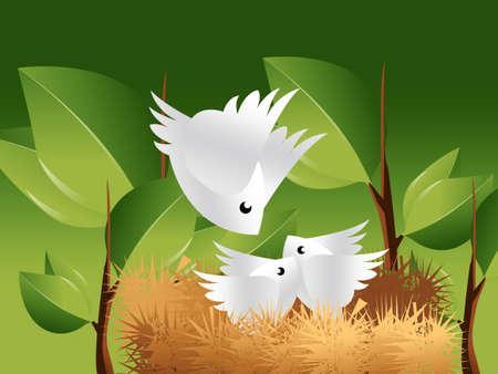 compartiendo: nido de aves en la parte superior del �rbol