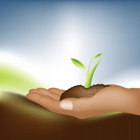 hands holding plant: Plant Growth Background, theme of growth  .
