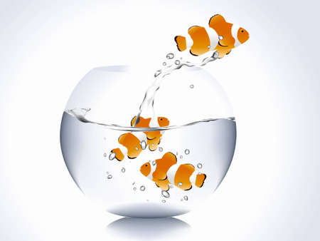 goldfish jump: clown fish jumping out of bowl fish.