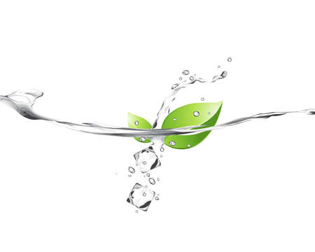 Illustration of green leaves in water  Illustration