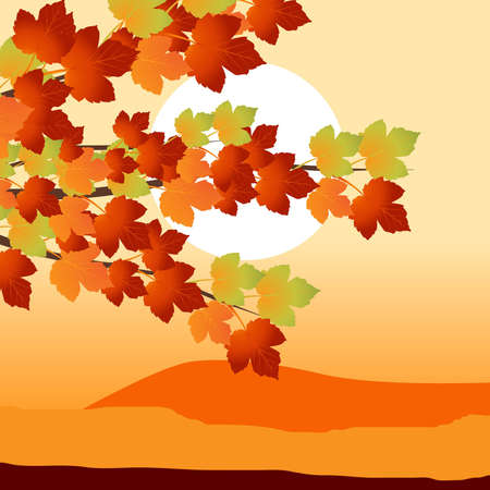 Colorful background of fallen autumn leaves  Vector