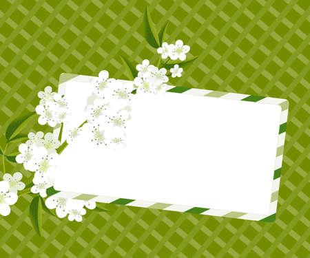 Post card,  Invitation card . Stock Vector - 7866790