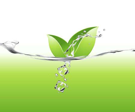 plantes aquatiques: Illustration de feuilles vertes dans l'eau Illustration