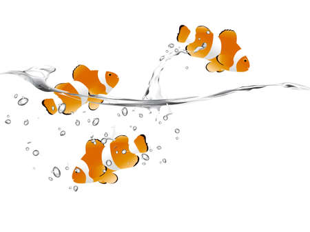 three clown fish swimming and jumping free. Vector