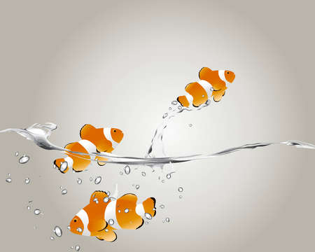 clown fish jumping to human hand Vector