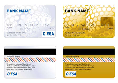 Professional design and Highly detailed credit card. Vector