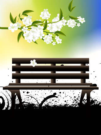 Green Grass and old wooden bench, spring season. photo