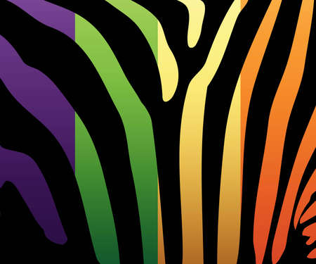 Illustration of colored zebra stripes.
