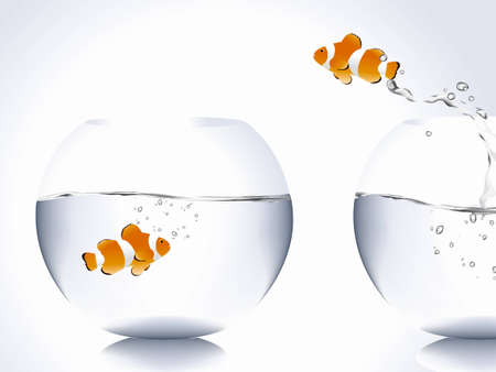 goldfish jump: clown fish jumping from bowl to another one, love concept .