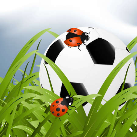 ball between grass and two ladybugs around it. Vector