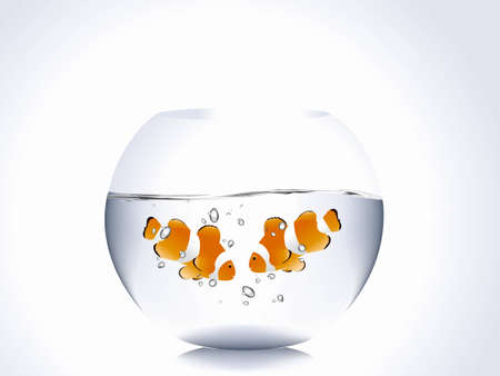 goldfish jump: Pair of clown fish into fish bowl Illustration