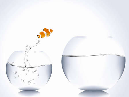 goldfish jump: clown fish jumping from small bowl to big bowl.