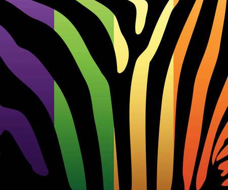 Illustration of colored zebra stripes. Also in vector format. Stock Vector - 8301577
