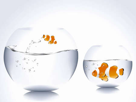 nemo: big clown fish into small bowl and small clown fish into big bowl.