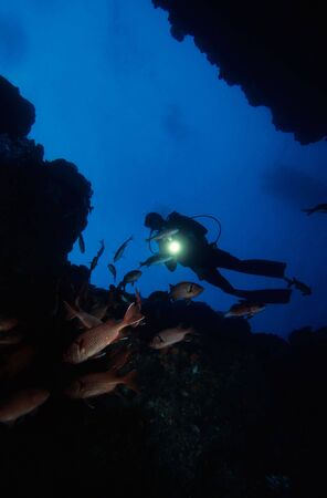 fascinate: Adventure Diving on a Coral Reef, Indian Ocean Stock Photo
