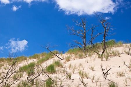 Moving dunes near the Baltic Sea in Slowinski park Stock Photo