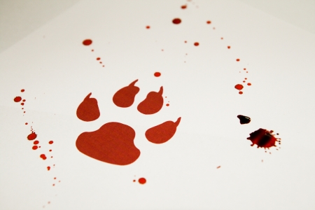 Fake bloody paw trace on white paper