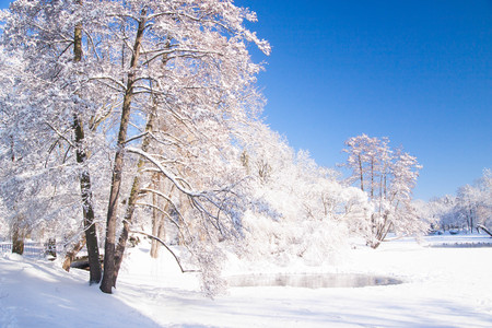 Frozen pond covered in snow during winter in Warsaw park Lazienki, Poland Stock Photo