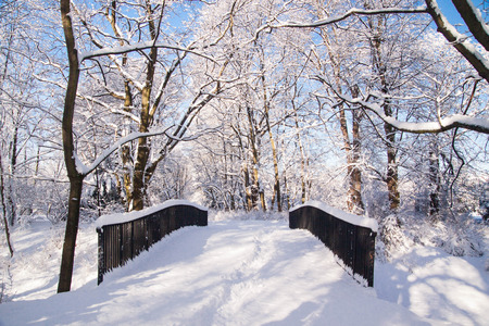 Snowy bridge after heavy snow fall in Warsaw Lazienki park during winter, Poland Stock Photo