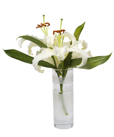 Bouquet of white lily in glass isolated over white  photo