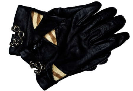 leather glove: black leather glove isolated on white background