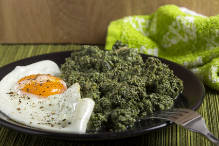 Stewed nettles with garlic and one egg on dark plate with fork