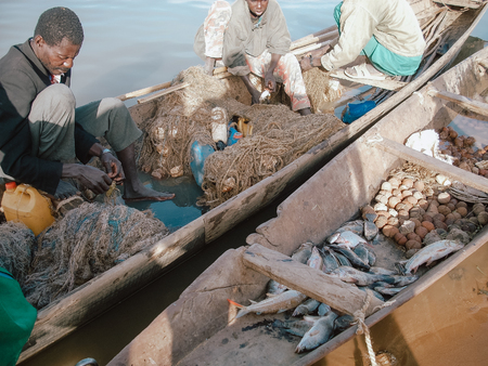 Timbuktu, Mali, Africa - February 4, 2008: Fishermen organizing their catch of the day before returning to port
