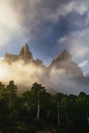 Majestic mountain peaks towering above a forest