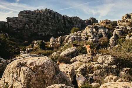 Karst landscape in El Torcal de Antequera, Spain