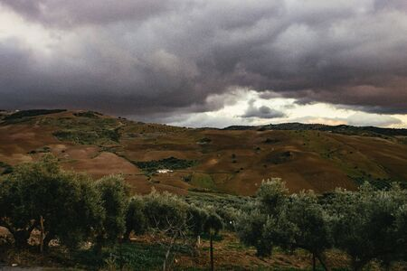 Dark ominous storm clouds over olive orchards