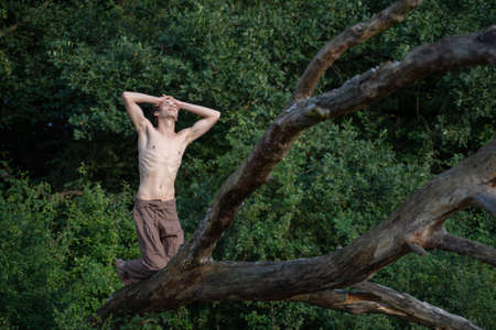 Shirtless man with hands in hair kneeling on log against trees at forest Banque d'images