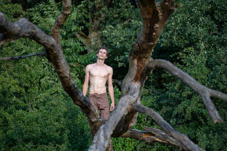 Shirtless man looking up while kneeling on log against trees in forest