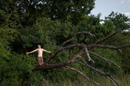 Shirtless man with arms outstretched kneeling on log against trees in forest Banque d'images