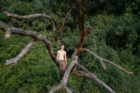 Shirtless man kneeling on log against trees in woodland Banque d'images