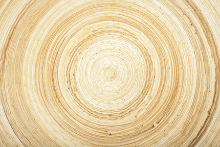 beatyful texture of natural modern wood circle rings Standard-Bild
