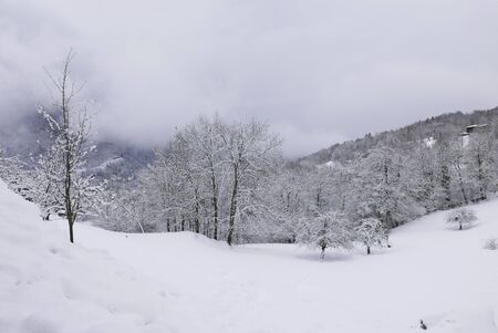 holiday at the foot of Mont Blanc in winter in the Chamonix Valley, France