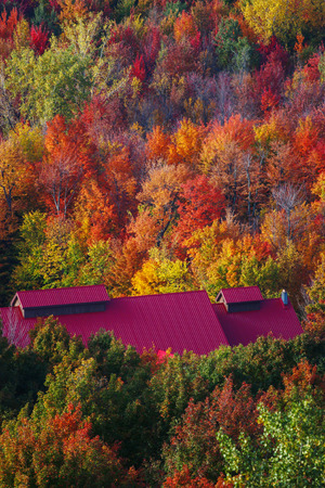 colorful canadian forest with red roof farm Stock Photo