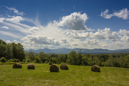 beast ranch: agricultural scenery with cloudy blue sky