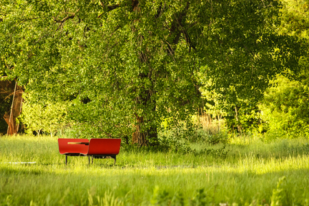 red picnic table in a green forest Stock Photo