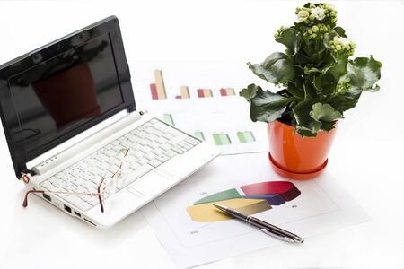 Business concept in the office. Laptop, graphic and flower in flowerpot