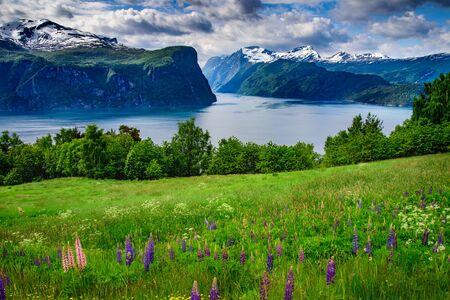 The beautiful illuminated landscape of Norway's mountain lake glacier