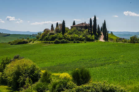 Tuscany spring, rolling hills and windmill on sunset. Rural landscape. Green fields. Italy, Europe