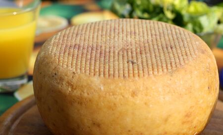 close up of a cheese wheel