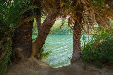 View of river near Preveli beach river and palm forest, southern Crete, Greece