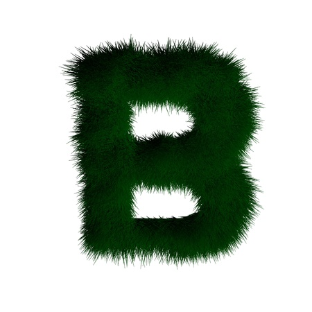 letter b made of grass photo