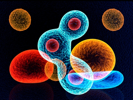 cells colors  Stock Photo