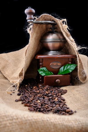 winnower: vintage coffee grinder and coffe plant with granules